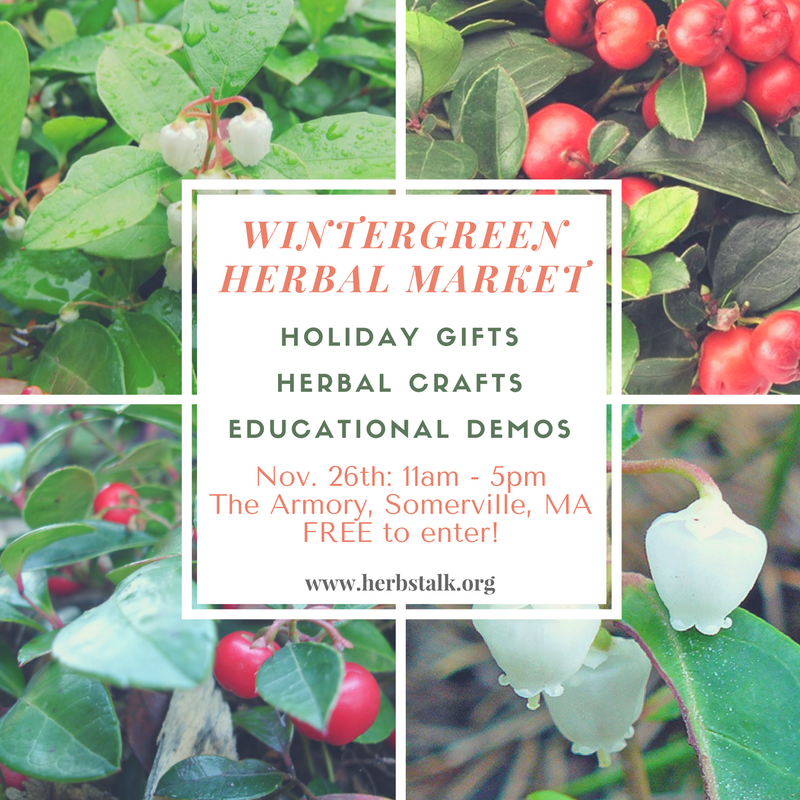 wintergreen2-herbal-market_orig